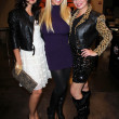 "Natasha Blasick, Mary Carey, Rena Riffel  at the final theatrical screening of Rena Riffel's ""Showgirls 2,"" NoHo 7 Laemmle Theatre, North Hollywood - Stock Photo"