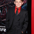 Постер, плакат: Max Charles at The Amazing Spiderman World Premiere Village Theater We