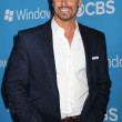 Stock Photo: Don Diamont