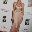 Denise Richards at the American Humane Association Hero Dog Awards, Beverly Hilton, Beverly Hills, CA 10-06-12 — Stock Photo