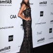Постер, плакат: Alessandra Ambrosio at amfARs Inspiration Gala Los Angeles Milk Studios Los Angeles CA 10 11 12