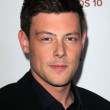 Cory Monteith at the Premiere Screening of FXs American Horror Story Asylum, Paramount Theater, Hollywood, CA 10-13-12 — Stock Photo