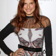 Stock Photo: Lake Bell at Elle Magazine 17th Annual Women in Hollywood, Four Seasons, Los Angeles, C10-15-12