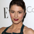 Stock Photo: Mary Elizabeth Winstead at Elle Magazine 17th Annual Women in Hollywood, Four Seasons, Los Angeles, C10-15-12