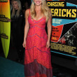 Leven Rambin  at the Chasing Mavericks Los Angeles Premiere, Pacific Theaters, Los Angeles, CA 10-18-12 - Stock Photo