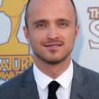 Stock Photo: Aaron Paul at 37th Annual Saturn Awards, Castaway, Burbank, CA. 06-23-11