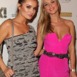"Joanna Krupa and sister  at the ""Women of Music"" Celebration, The Colony, H — Photo"