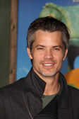 Timothy Olyphant — Stock Photo
