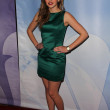 Stock Photo: Aimee Teegarden at NBC Universal Press Tour All-Star Party, Langham Huntington Hotel, Pasadcena, CA. 01-13-11