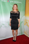 Erika Christensen at the NBC Universal Press Tour All-Star Party, Langham — Stock Photo