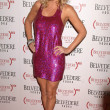 Stock Photo: Jenny McCarthy at Belvedere Vodk(RED) Launch Party, Avalon, Hollywoo