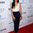 Aimee Garcia  at the 2nd Annual Autumn Party, The London, West Hollywood, CA 10-26-11 - Stock Photo