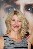 Laura Dern — Stock Photo