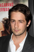 """Michael Angarano at the """"Ceremony"""" Los Angeles Premiere, Arclight, Hollywood — Stock Photo"""