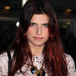 "Lake Bell  at the ""Wanderlust"" Los Angeles Premiere, Mann Village Theatre, Westwood, CA 02-16-12 — Stock Photo"
