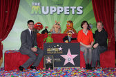 Rich Ross, Leron Gubler at the Muppets Star on the Hollywood Walk of Fame, Hollywood, CA 03-20-12 — Stock Photo
