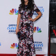 Stock Photo: Abigail Spencer at 2011 AmericGiving Awards, Dorothy Chandler Pavilion, Los Angeles, C12-09-11