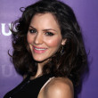 Katharine McPhee  at the NBCUNIVERSAL Press Tour All-Star Party, The Athenaeum, Pasadena, CA 01-06-12 — Stockfoto