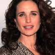 Andie MacDowell — Stock Photo #14438833