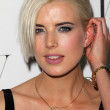 Stock Photo: Agyness Deyn at W Magazine Best Performances Issue Golden Globes Party, Chateau Marmont, West Hollywood, C01-13-12