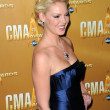 Katherine Heigl  at the 44th Annual CMA Awards, Bridgestone Arena, Nashville, TN.  11-10-10 — Stock Photo