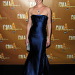 Постер, плакат: Katherine Heigl at the 44th Annual CMA Awards Bridgestone Arena Nashville TN 11 10 10