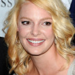 Katherine Heigl  at a Press Conference For JDHF Animal Advocacy, Four Seasons Hotel, Beverly Hills, CA. 09-23-10 - Stock Photo