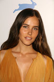 Isabel Lucas — Stock Photo