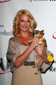 Katherine Heigl at a Press Conference For JDHF Animal Advocacy, Four Seasons Hotel, Beverly Hills, CA. 09-23-10 — Stock Photo