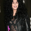 Cher  at the 2010 MTV Video Music Awards Press Room, Nokia Theatre L.A. LIVE, Los Angeles, CA. 08-12-10 - Foto Stock