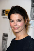 Jeanne Tripplehorn — Stock Photo