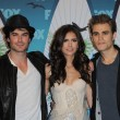 Постер, плакат: Ian Somerhalder Nina Dobrev and Paul Wesley