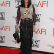 Постер, плакат: Cher at the The AFI Life Achievement Award Honoring Mike Nichols presented by TV Land Sony Pictures Studios Culver City CA 06 10 10