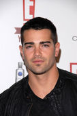 Jesse Metcalfe at E!'s 20th Birthday Bash Celebrating Two Decades of Pop Culture, The London, West Hollywood, CA. 05-24-10 — 图库照片