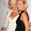 Stock Photo: Paris Hilton, AmandHolden