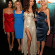Постер, плакат: Jessica Szohr Elisabeth Shue Kelly Brook and Riley Steele at the Piranha 3D Los Angeles Premiere Chinese 6 Hollywood CA 08 18 10