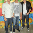 Stock Photo: Kevin Jonas, Joe Jonas and Nick Jonas at Disney ABC Television Group Summer Press Junket, ABC Studios, Burbank, CA. 05-15-10