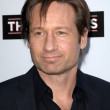 David Duchovny — Stock Photo #14980615