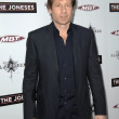 Stock Photo: David Duchovny
