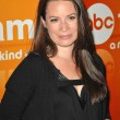 Holly Marie Combs  at the Disney ABC Television Group Summer Press Junket, ABC Studios, Burbank, CA. 05-15-10 — Stock Photo
