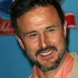 David Arquette — Stock Photo #14986519