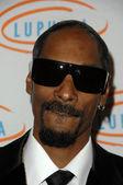 Snoop dogg — Foto de Stock