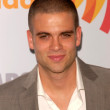 Stock Photo: Mark Salling at 21st Annual GLAAD MediAwards, Hyatt Regency Century Plaza, Century City, CA. 04-17-10