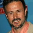 Stock Photo: David Arquette