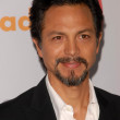 Benjamin Bratt at the 21st Annual GLAAD Media Awards, Hyatt Regency Century Plaza, Century City, CA. 04-17-10 - Stock Photo
