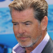 Pierce Brosnan - Stock Photo