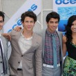 Постер, плакат: Kevin Jonas Nick Jonas and Joe Jonas with Demi Lovato