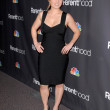 "Erika Christensen  at the ""Parenthood"" Premiere Party, Director's Guild of America, Los Angeles, CA. 02-22-10 — Stockfoto"