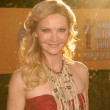Joan Allen  at the 16th Annual Screen Actor Guild Awards Arrivals, Shrine Auditorium, Los Angeles, CA. 01-23-10 - Foto Stock