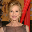 Holly Hunter - Foto de Stock